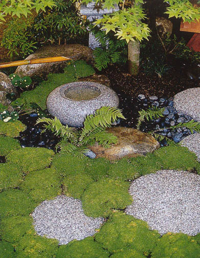 felix dudley Japanese garden