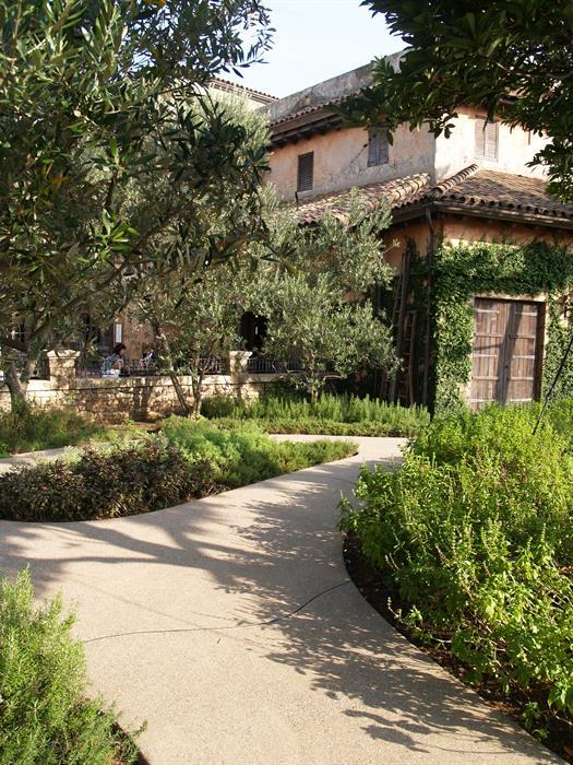 Landscape design diploma online landscaping diplomas for Garden design qualifications
