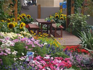 Courtyards study learn garden design at home for Landscape design courses brisbane
