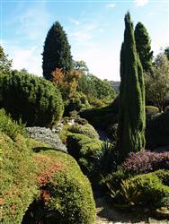 Garden designers certificate garden design for Gardening qualifications