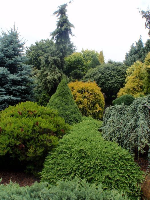 Landscape Design Diploma Online   Landscaping Distance ...