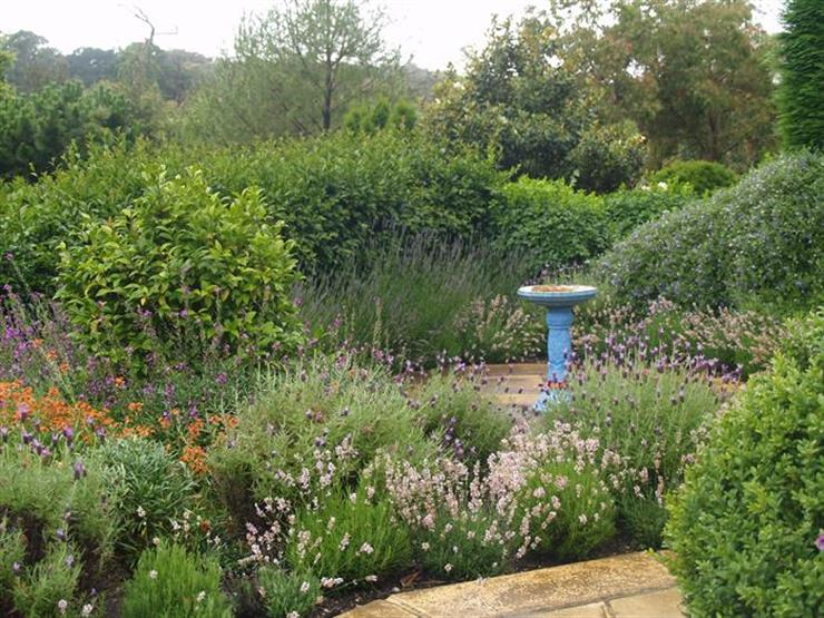 Mediterranean gardens for Garden design ideas canberra