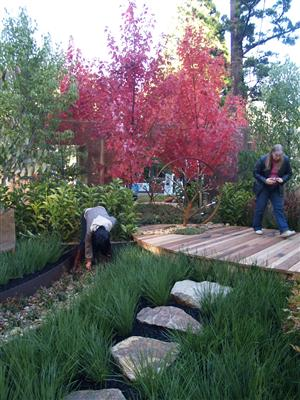 General horticulture courses home study gardening and for Landscape design courses home study